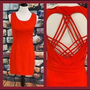 🆕 Tea n Cup Gorgeous Red Dress - Size L